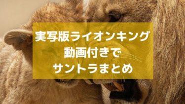 【サントラ】ビヨンセも歌う超実写版(CG)ライオンキング劇中で流れる曲を全て紹介・聴く方法【動画あり】